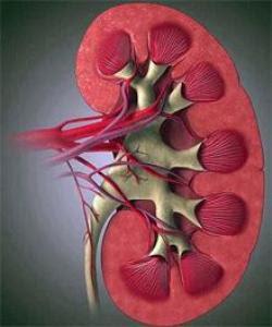 причины гипертонии, причины возникновения гипертонии, лечение артериальной гипертонии, методы лечения гипертонии