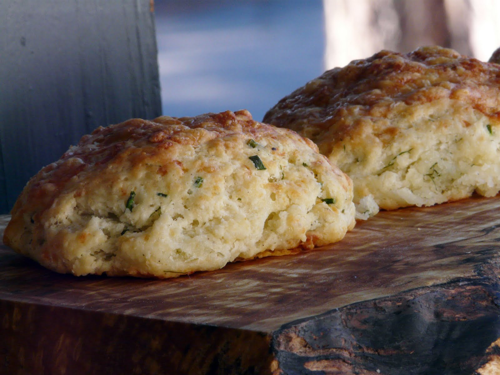 drop biscuits herb biscuits fl a ky herb biscuits buttermilk herb