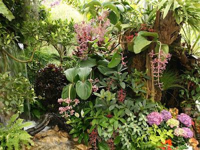 Naturaleza verde del legolas tipos de floresplantas y - Plantas tropicales para jardin ...