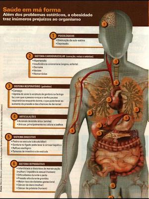 Fisiologia corpo humano