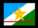 Bandeira de Roraima
