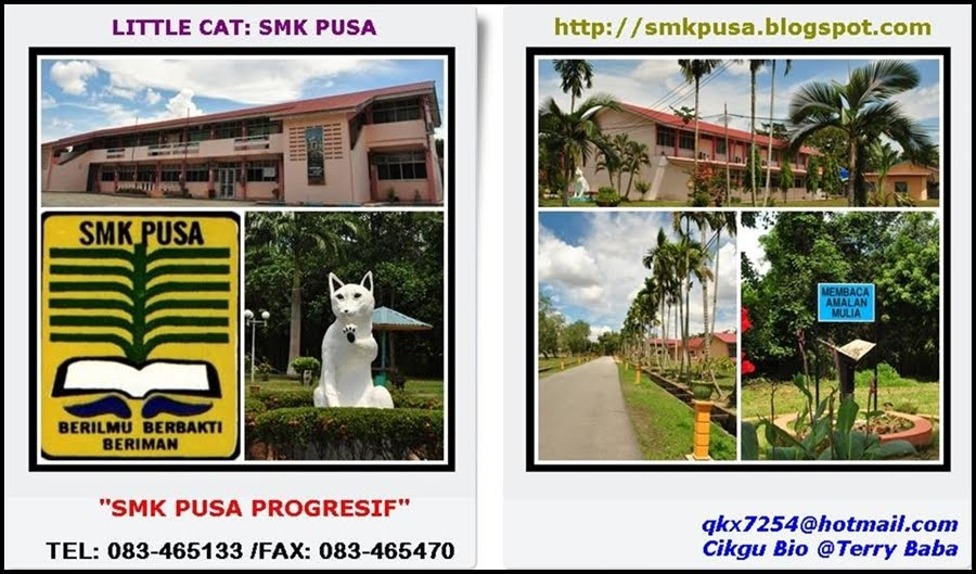 Little Cat: SMK Pusa, Betong.