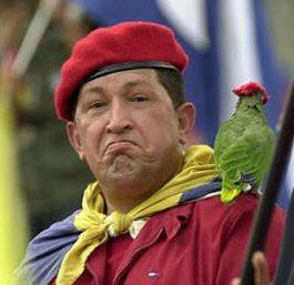 (Fauna) Animales Que habitan en Venezuela