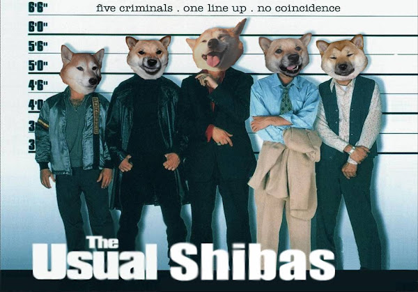 The Usual Shibas