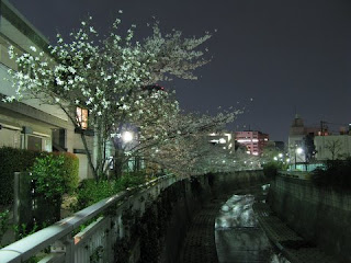 Kanda River, Nakano-sakashita, Tokyo.