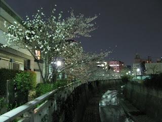 Kanda River, Nakano-sakashita, Tokyo.