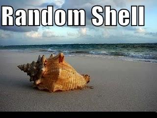 Random Shell