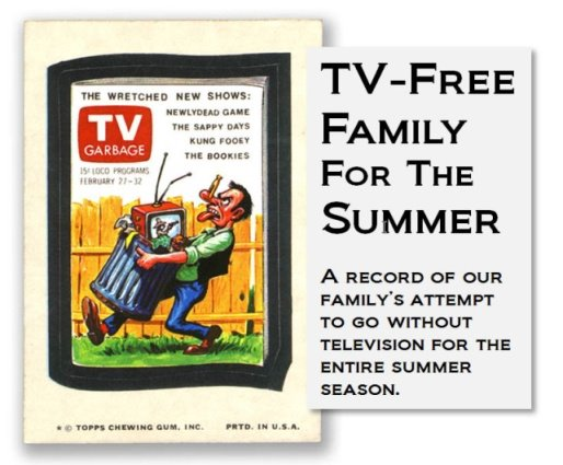 TV-Free Family for the Summer