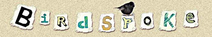 BirdSpoke