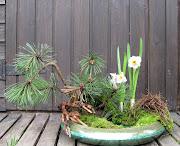 Paysage de printemps img