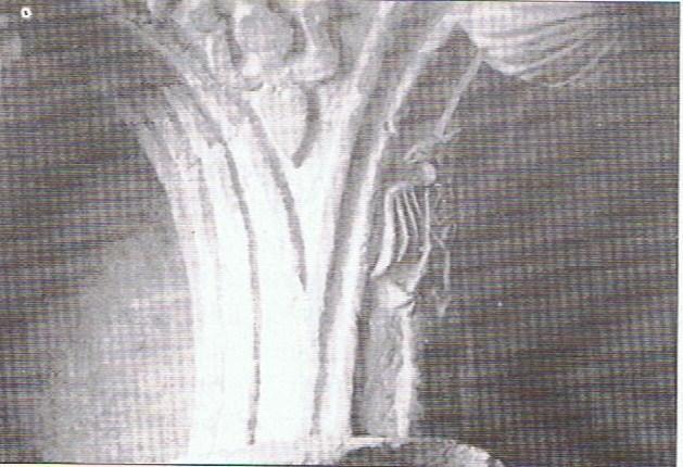 stemma di Federico II:giglio e aquila sveva , eretto dallo stesso a Casamari