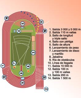 Bit cora de luc a informaci n sobre atletismo for Cuanto peso aguanta un cuelga facil