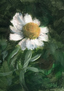 ACEO daisy painting