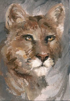 cougar painting aceo