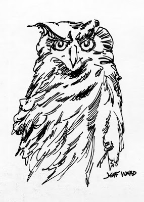 owl pen and ink drawing