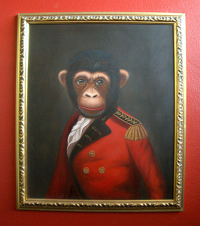 monkey1 - Picture of Yourself - Introduce Yourself