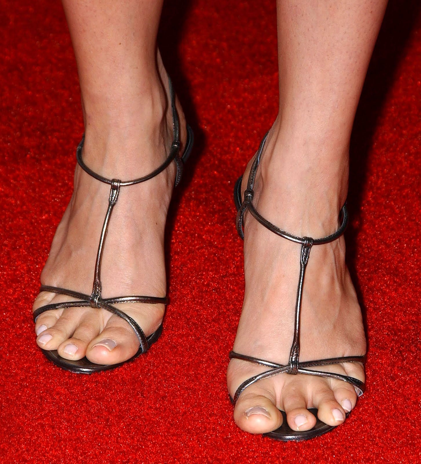 Megyn Kelly Legs And Feet - newhairstylesformen2014.com