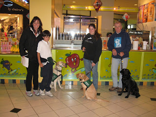 The dogs and raisers at the Smoothie Kiosk