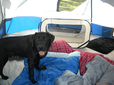 Dagan inside the tent amid a mess of sleeping bags and pillows. His tent crate in the background