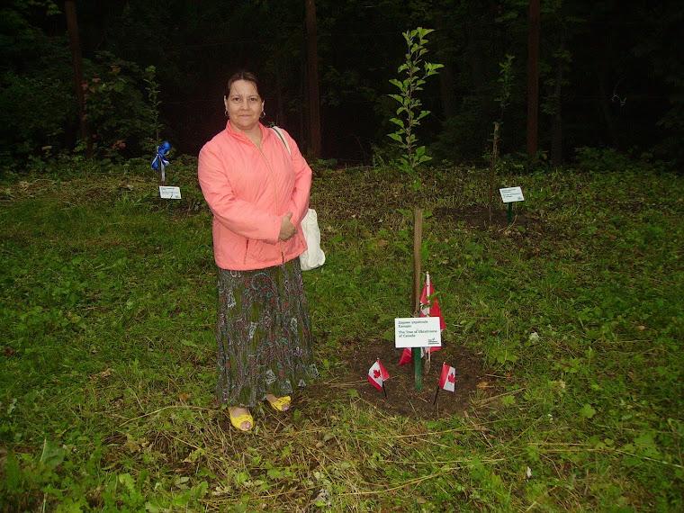 валентіна, біля деревця канади
