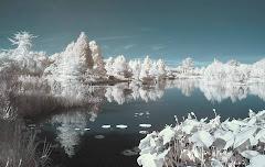 03 vine iarna