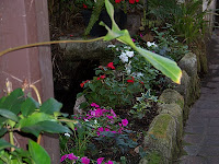 Courtyard Garden Makeover 13  Courtyard+and+Pond+Gardens+008 St. Francis Inn St. Augustine Bed and Breakfast