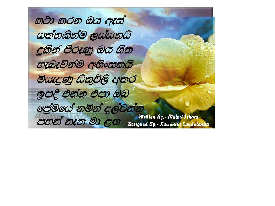 Lkpicturesgallery The Most Popular Sri Lankan Picturesgallery