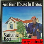 nathaniel best - set your house in order lp 1986