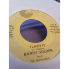 BARRY GOLDEN - flash it 198x
