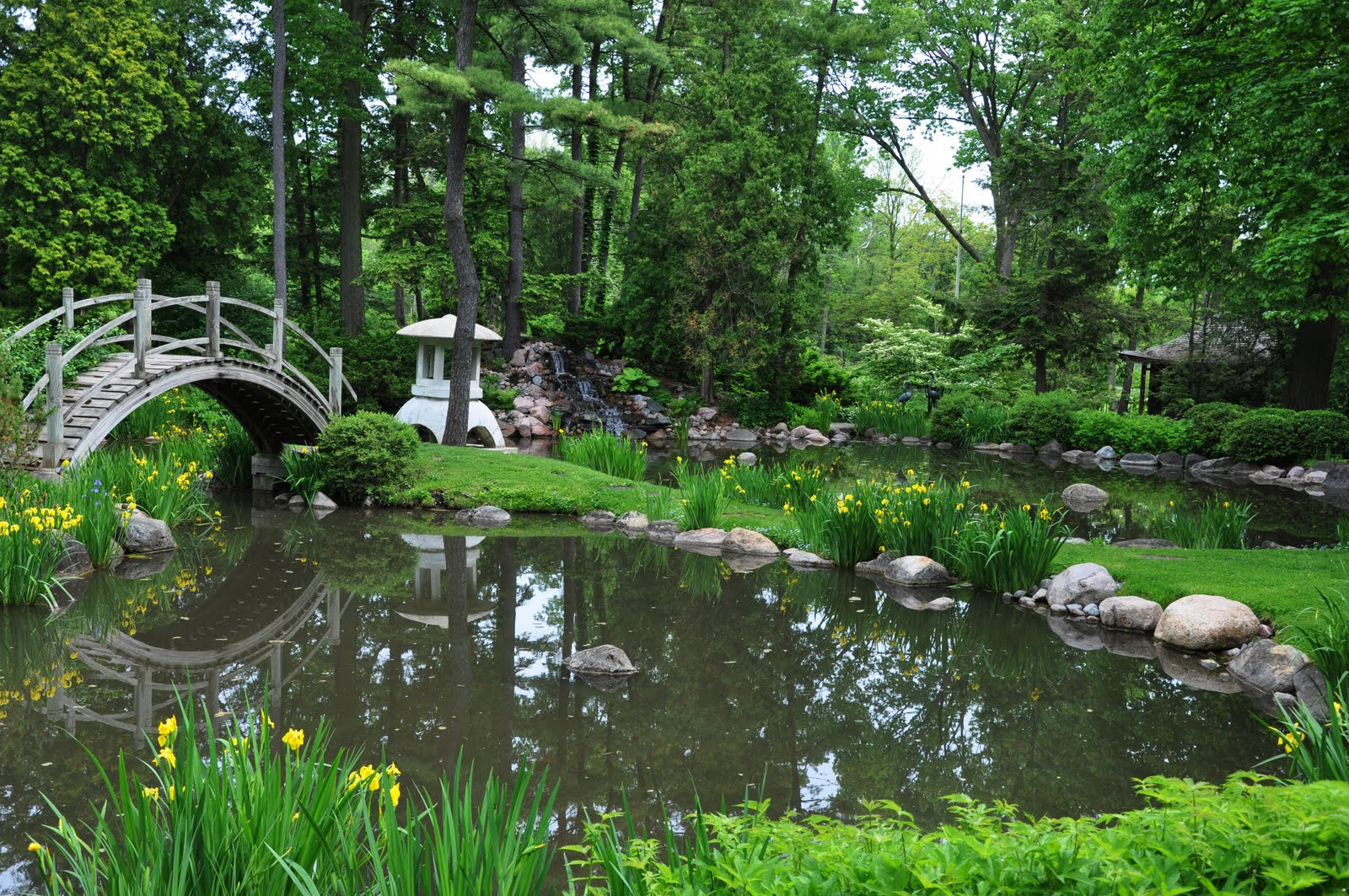 Rick beato photo japanese garden for Japanese water garden