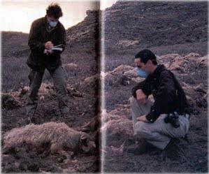 Lorenzo Fernández e Iker Jímenez en sus comienzos investigando el fenómeno del chupacabras
