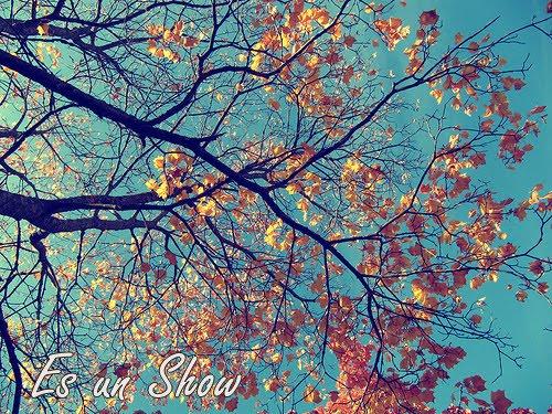 La vida es un   S h o w ♥
