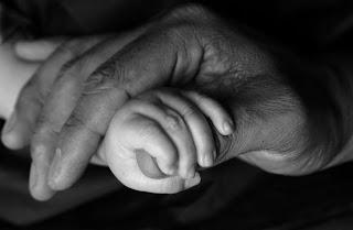 Foto Mão de adulto acolhendo mão de bebê