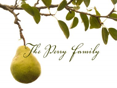 The Perry Family