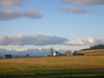 Willowood Farm of Ebey's Prairie