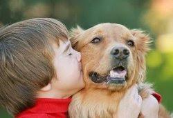 Melhores animais de estimação para crianças