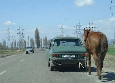 funny picture romania horse car petrol