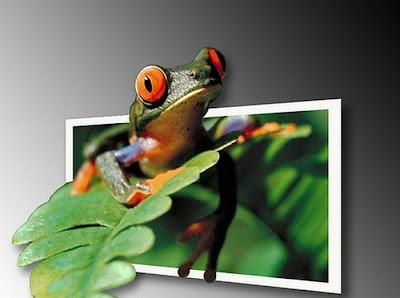 amazing 3-D pictures