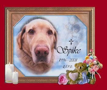 En memoria de SPIKE (Q.E.P.D.)