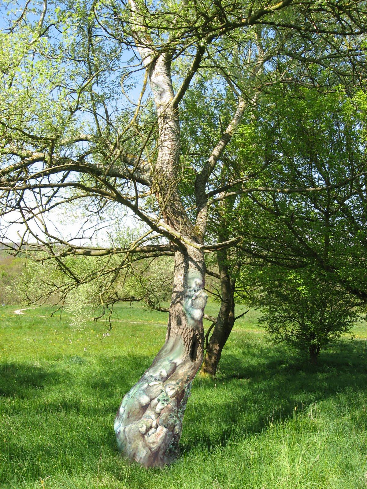 83 dessin d 39 un arbre r el smog 39 s drawings - Dessins d arbre ...