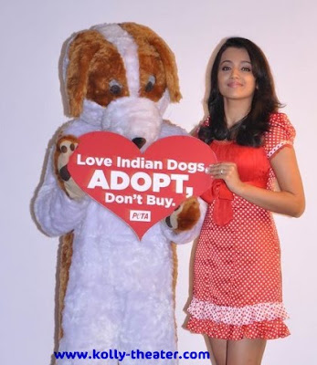 Trisha: Please adopt street dogs