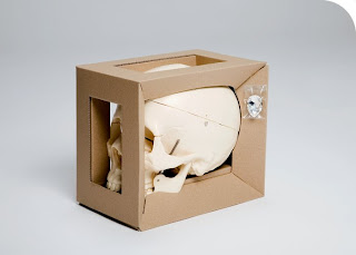iArist's diamond skull do it yourself kit