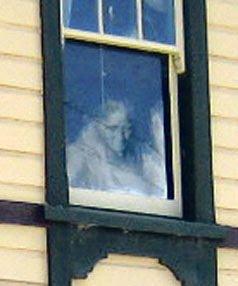 شبح النافذة - نيوزيلندا