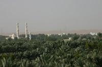 مشهد من أطراف مدينة العين في الإمارات العربية المتحدة
