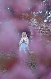 هل دبت الحياة في تمثال العذراء ؟