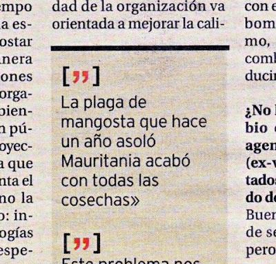 Contraportada de Diario de Burgos 13/03/07