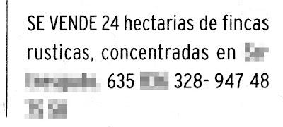Diario de Burgos 31/01/09