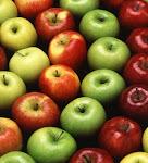 September Fruit in Season Now