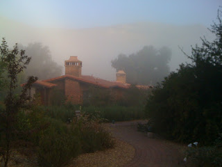 my villa in the morning mist