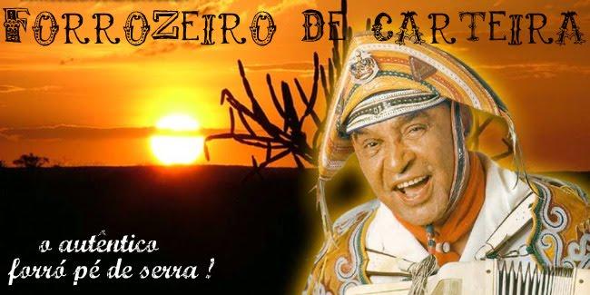 FORROZEIRO DE CARTEIRA